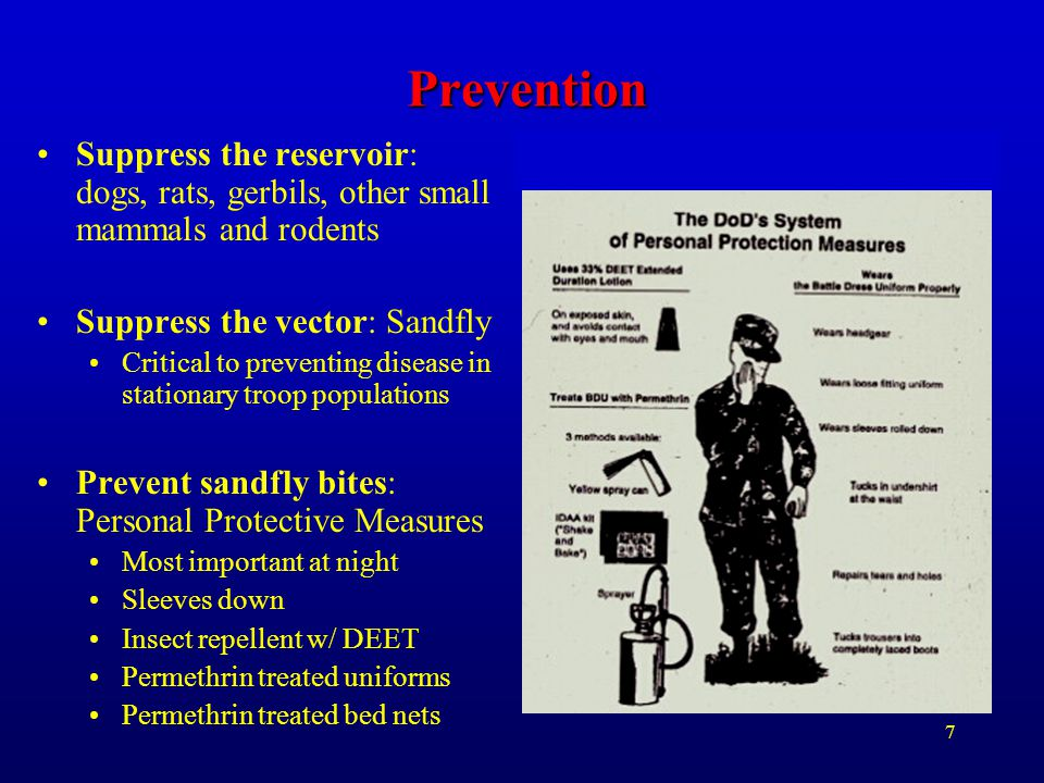 Prevention Suppress the reservoir: dogs, rats, gerbils, other small mammals and rodents. Suppress the vector: Sandfly.