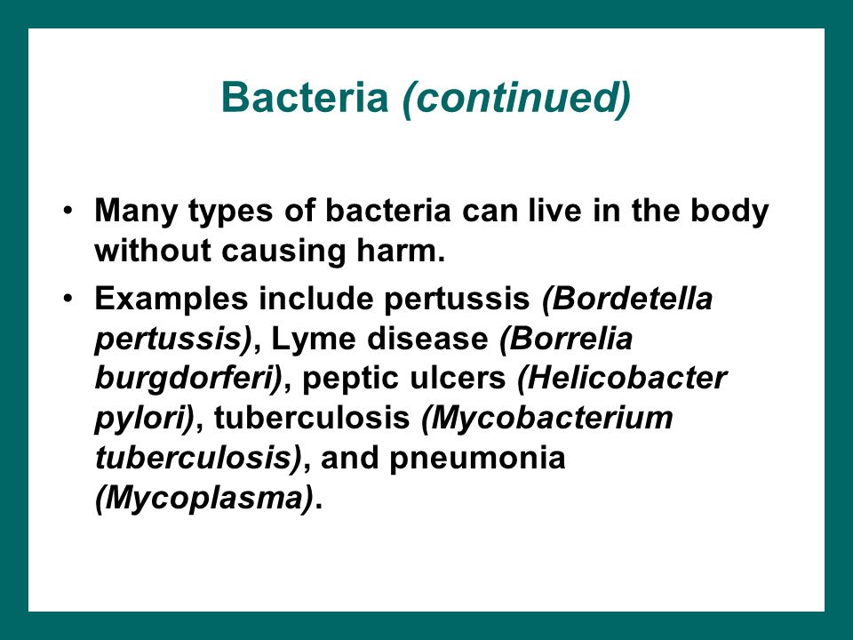 Bacteria (continued) Many types of bacteria can live in the body without causing harm.