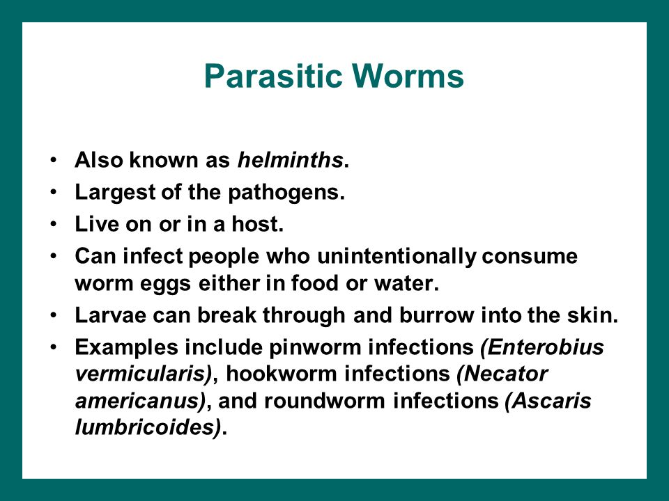 Parasitic Worms Also known as helminths. Largest of the pathogens.