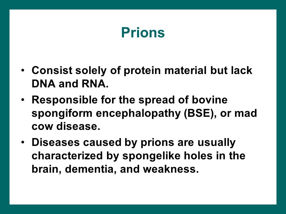 Prions Consist solely of protein material but lack DNA and RNA.