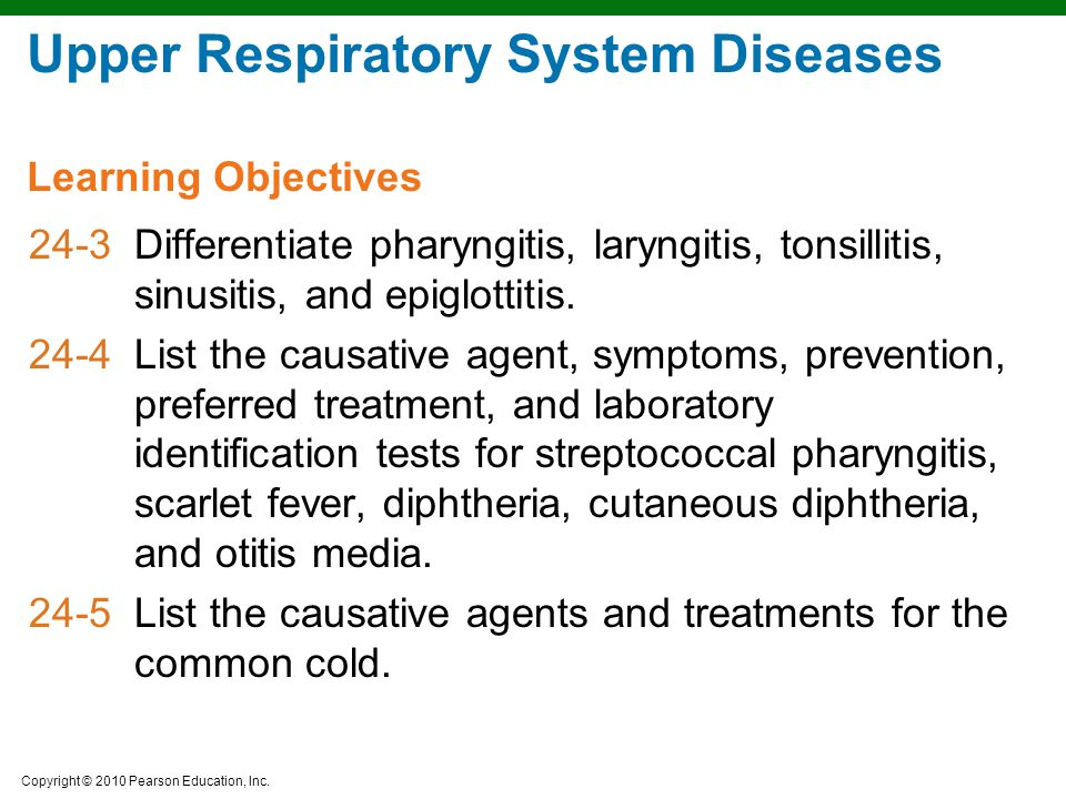 Upper Respiratory System Diseases