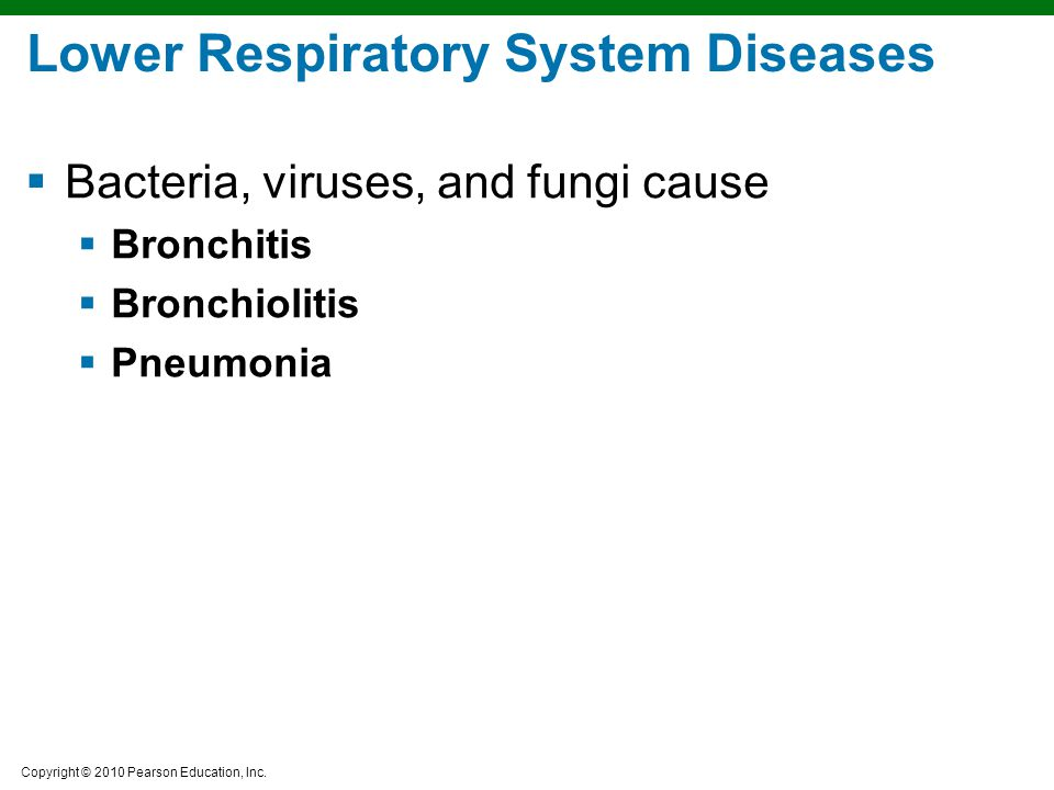 Lower Respiratory System Diseases