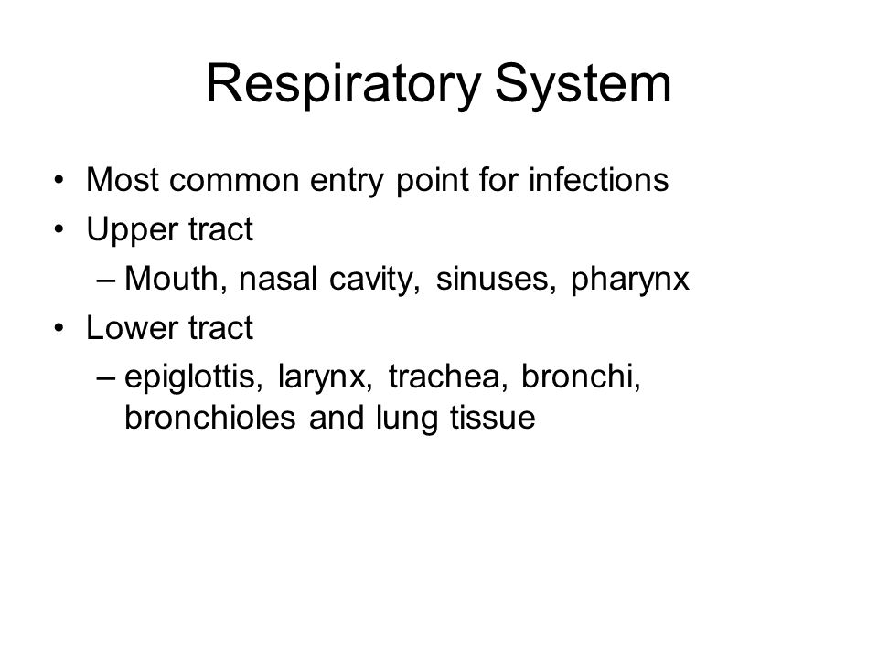 Respiratory System Most common entry point for infections Upper tract