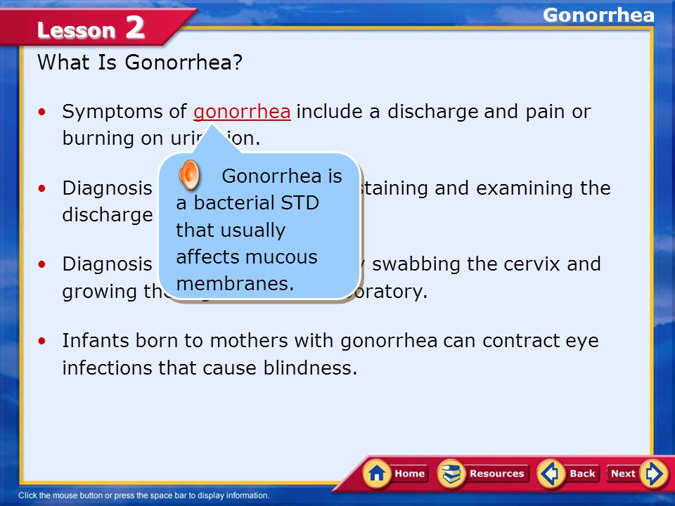 What Is Gonorrhea Gonorrhea