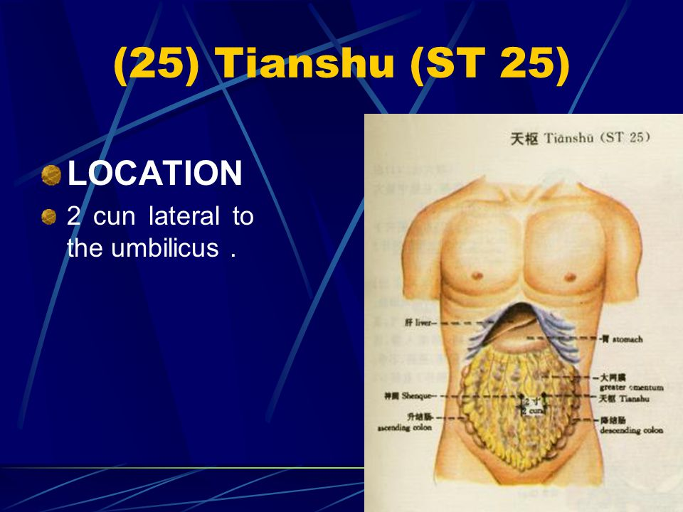 (25) Tianshu (ST 25) LOCATION 2 cun lateral to the umbilicus .