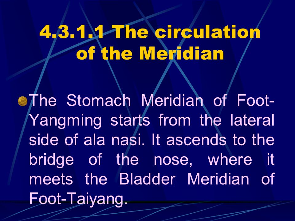4.3.1.1 The circulation of the Meridian