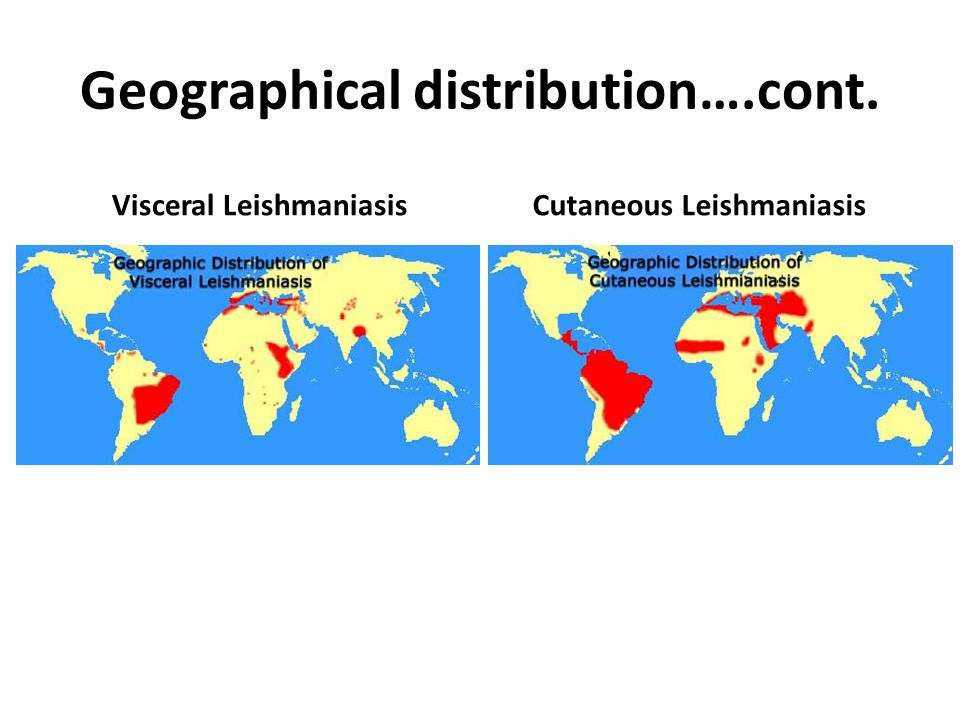 Geographical distribution….cont.