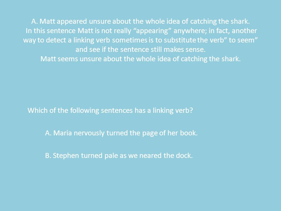 A. Matt appeared unsure about the whole idea of catching the shark