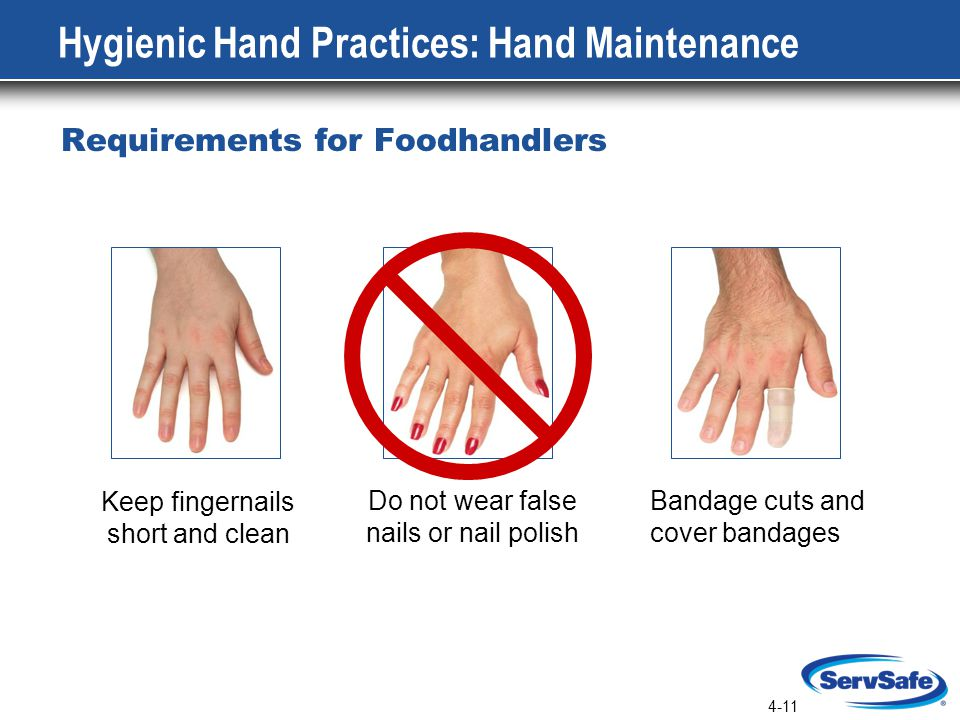 Hygienic Hand Practices: Hand Maintenance
