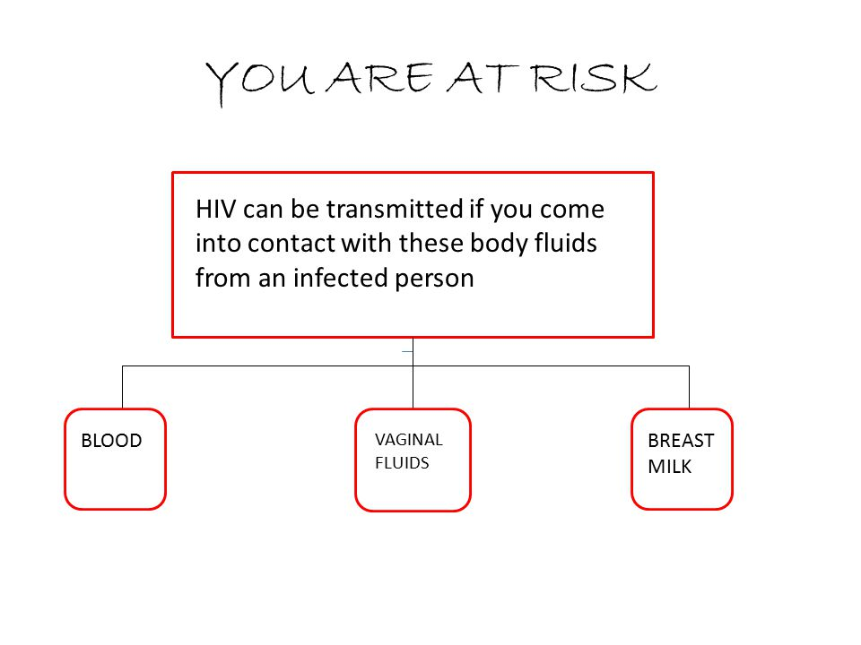 YOU ARE AT RISK HIV can be transmitted if you come into contact with these body fluids from an infected person.