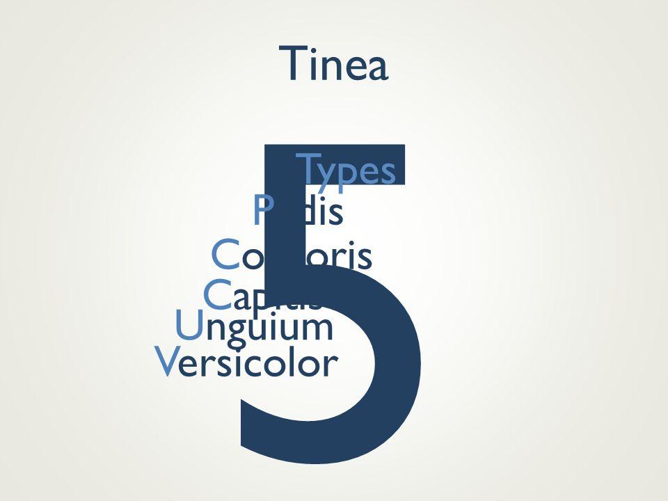 5 Tinea Types Pedis Corporis Capitis Unguium Versicolor