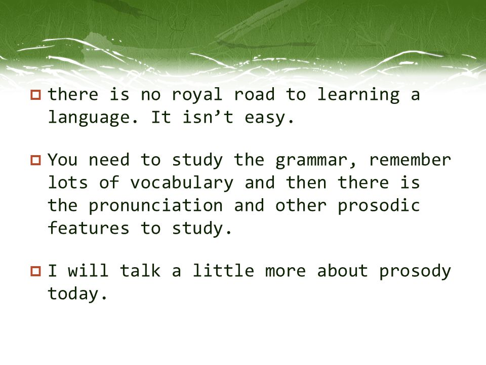 there is no royal road to learning a language. It isn't easy.