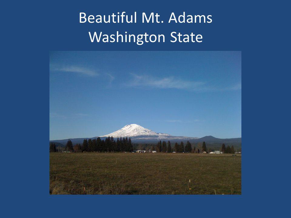 Beautiful Mt. Adams Washington State