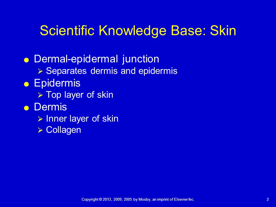 Scientific Knowledge Base: Skin