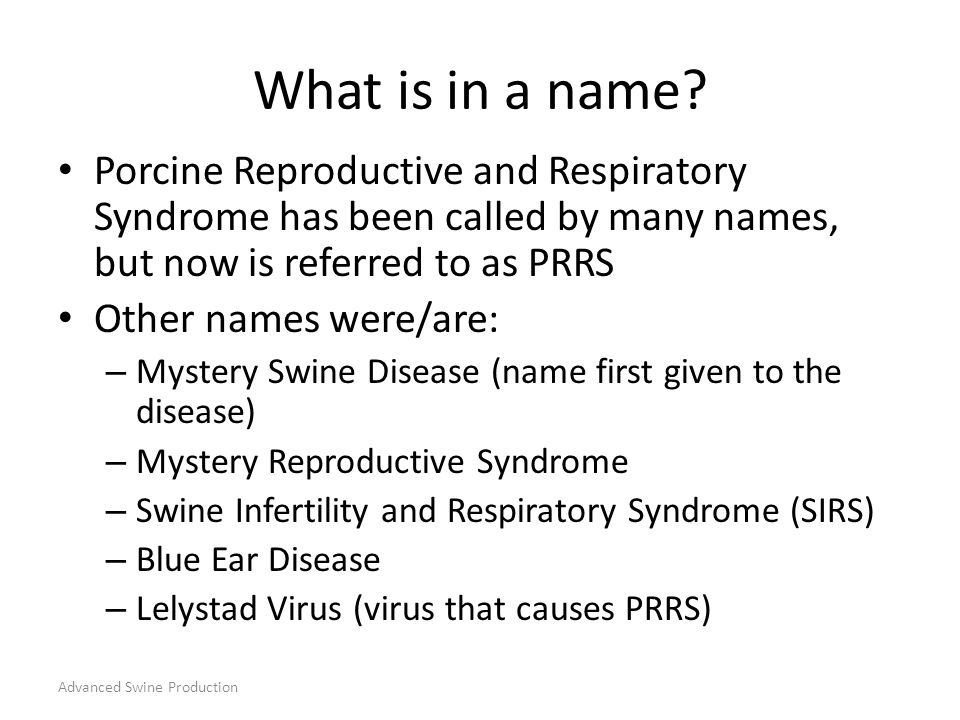 What is in a name Porcine Reproductive and Respiratory Syndrome has been called by many names, but now is referred to as PRRS.