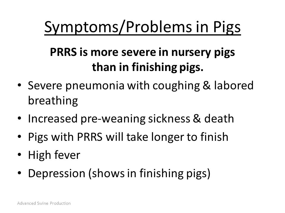 Symptoms/Problems in Pigs