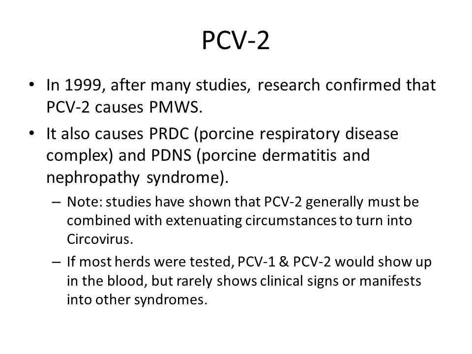 PCV-2 In 1999, after many studies, research confirmed that PCV-2 causes PMWS.