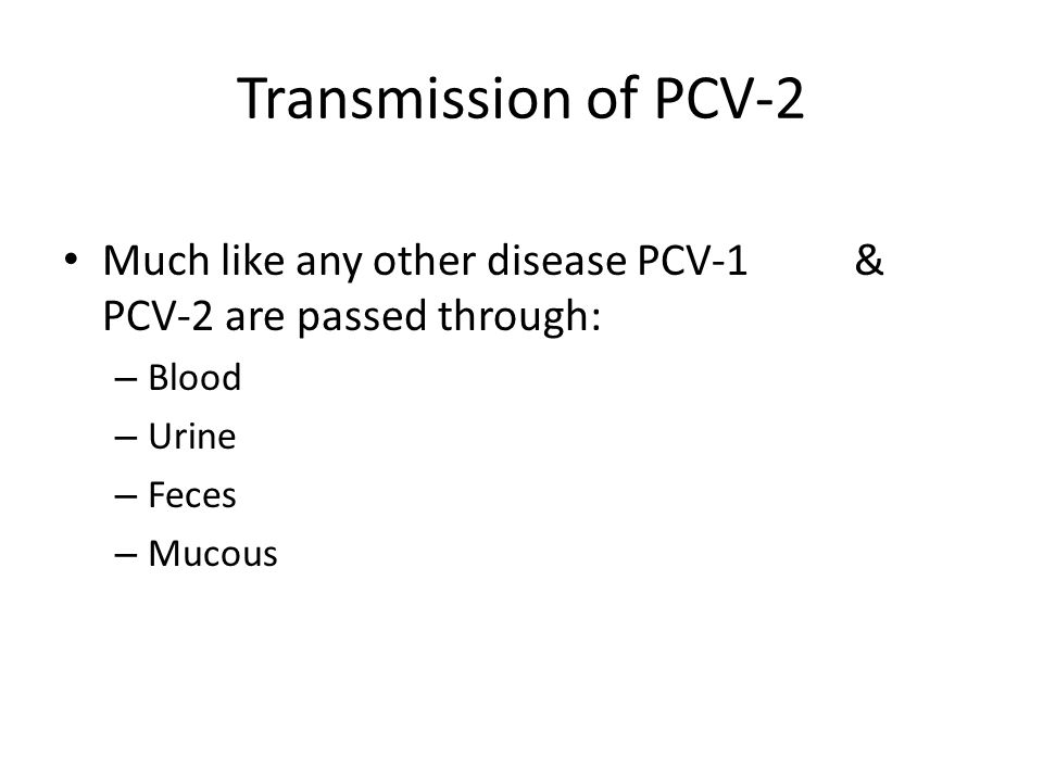 Transmission of PCV-2 Much like any other disease PCV-1 & PCV-2 are passed through: Blood.