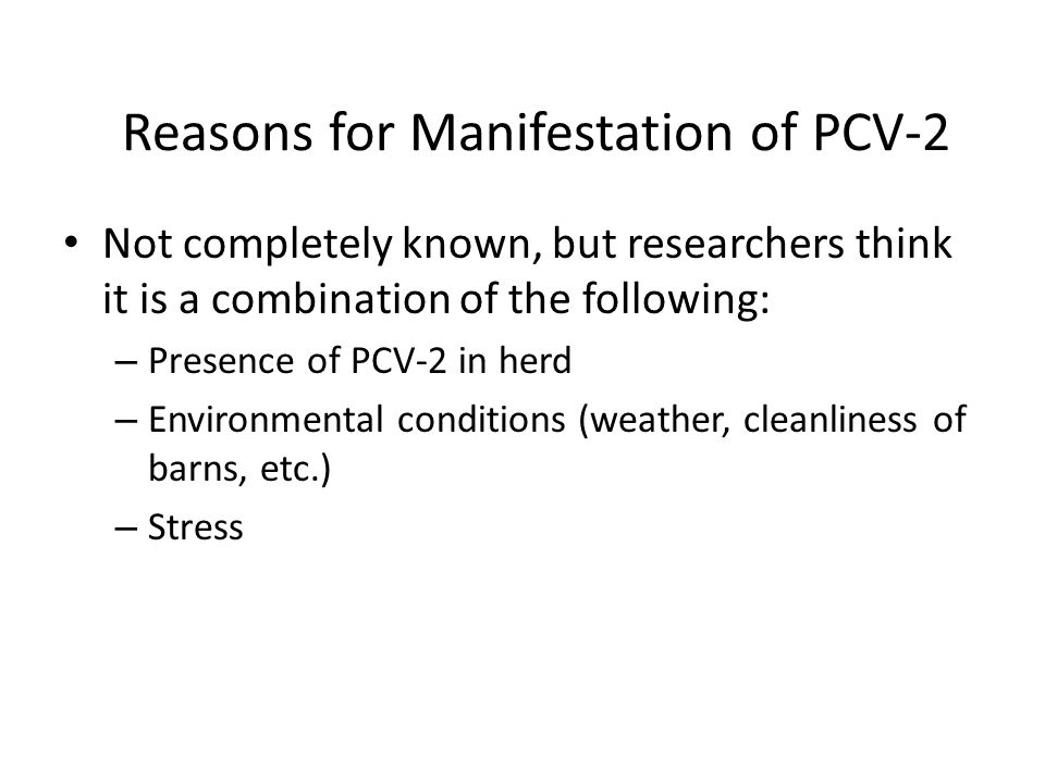 Reasons for Manifestation of PCV-2