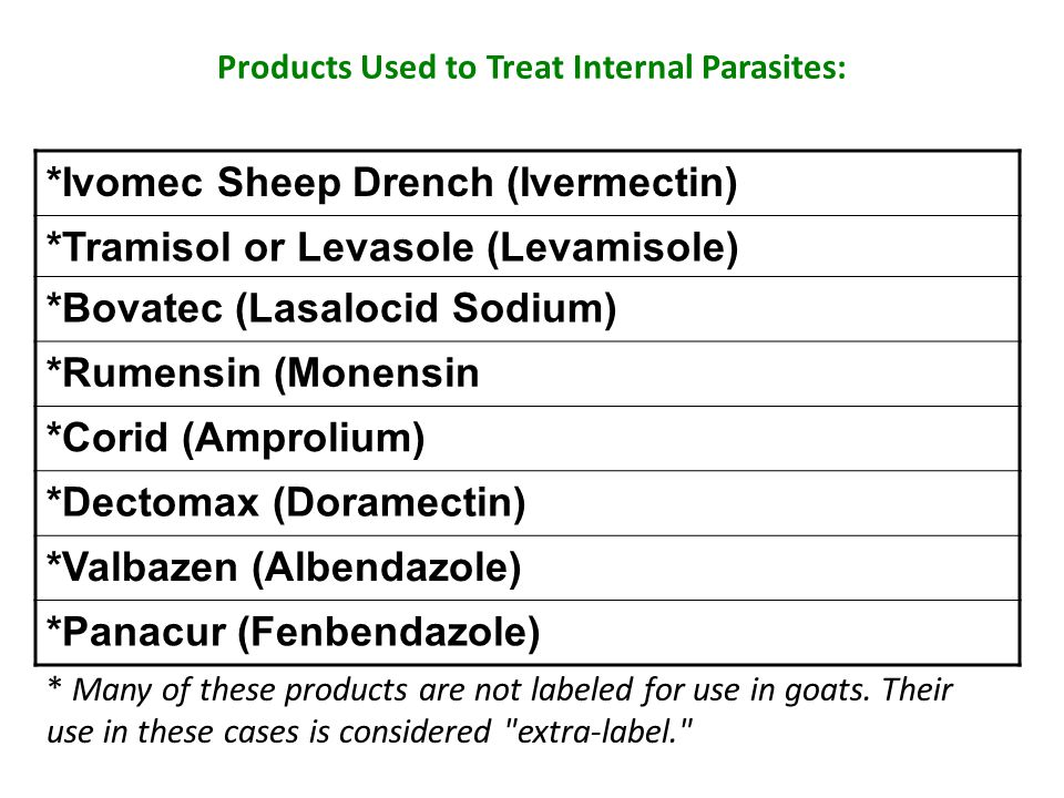Products Used to Treat Internal Parasites: