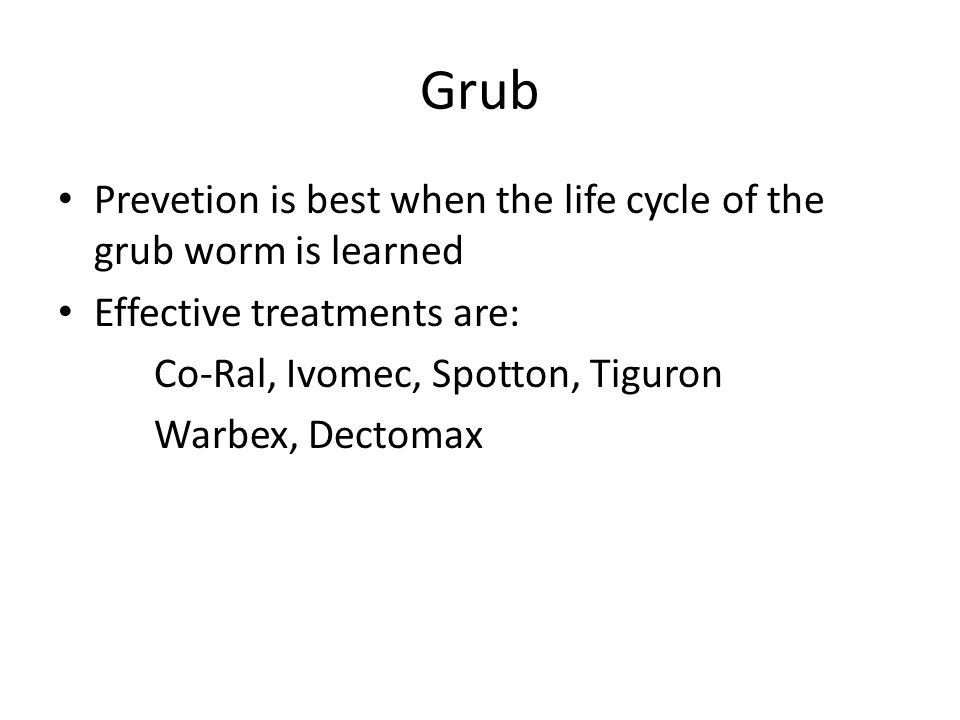 Grub Prevetion is best when the life cycle of the grub worm is learned
