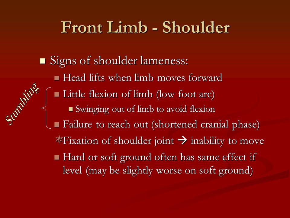 Front Limb - Shoulder Signs of shoulder lameness: