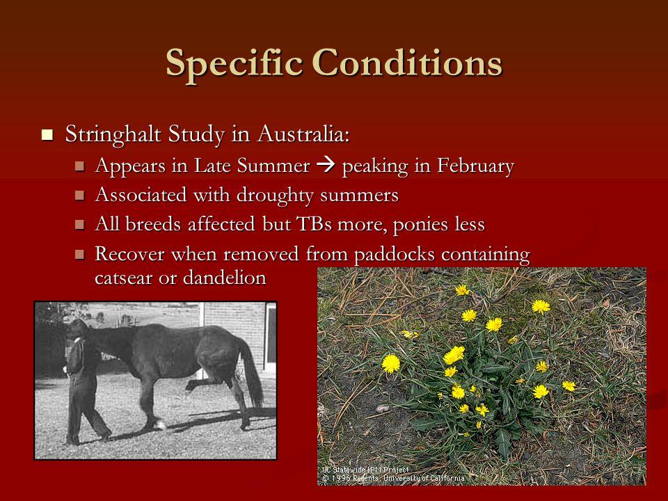Specific Conditions Stringhalt Study in Australia: