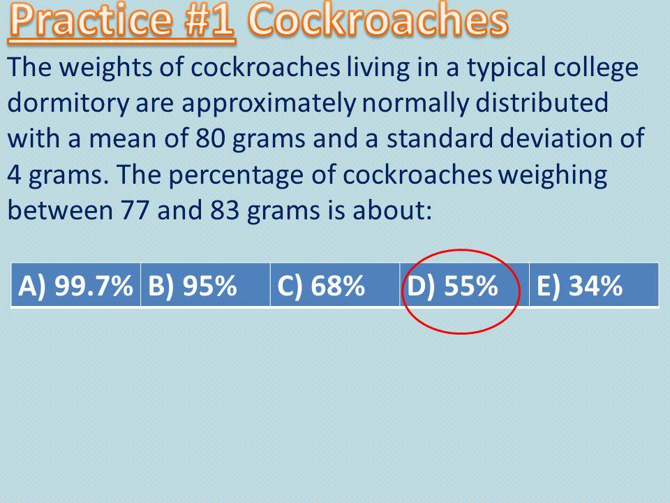 Practice #1 Cockroaches