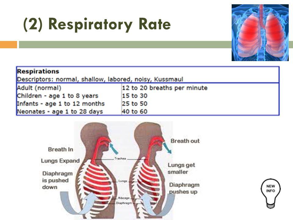 (2) Respiratory Rate