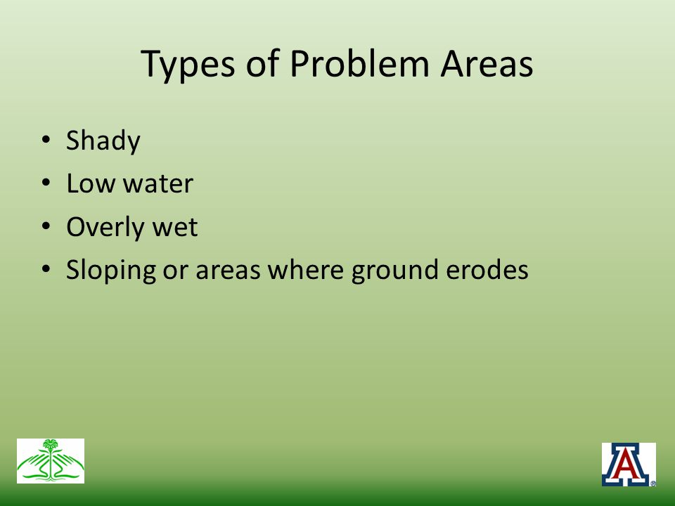 Types of Problem Areas Shady Low water Overly wet