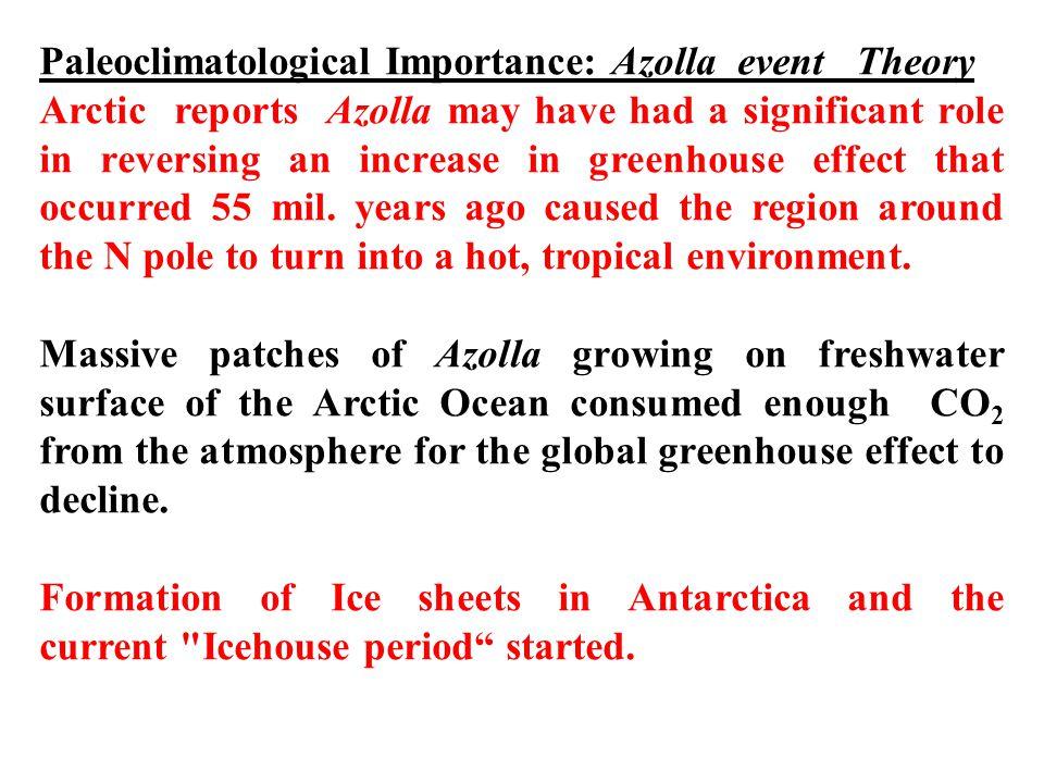 Paleoclimatological Importance: Azolla event Theory