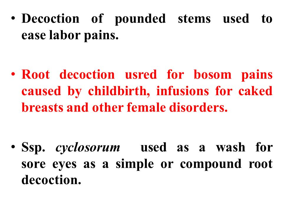 Decoction of pounded stems used to ease labor pains.