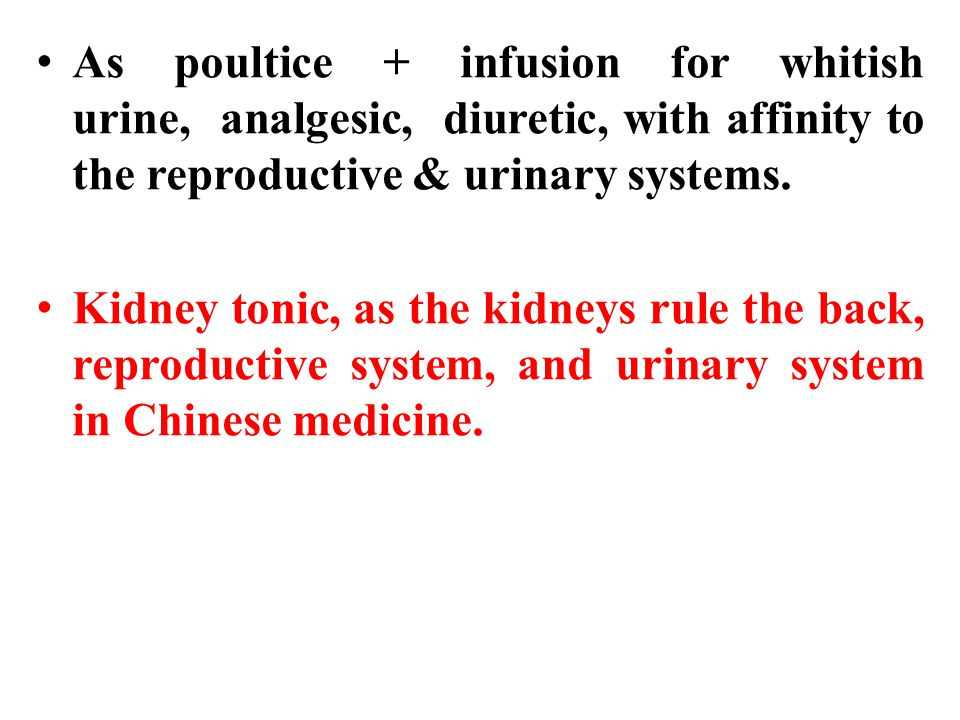 As poultice + infusion for whitish urine, analgesic, diuretic, with affinity to the reproductive & urinary systems.