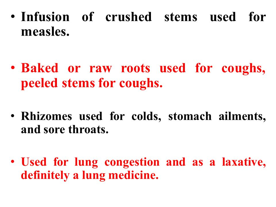 Infusion of crushed stems used for measles.