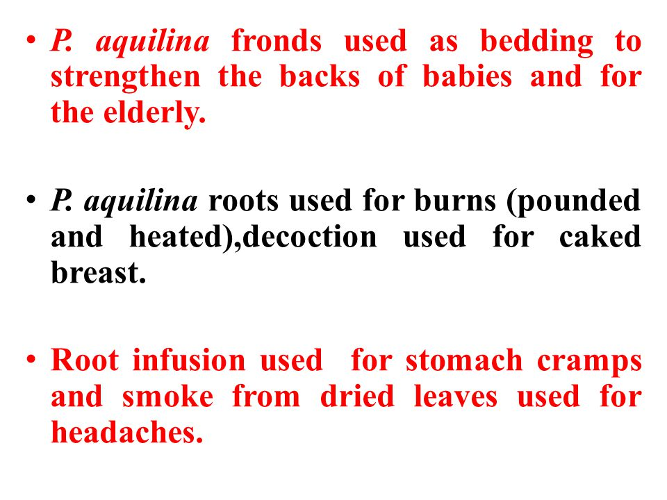 P. aquilina fronds used as bedding to strengthen the backs of babies and for the elderly.