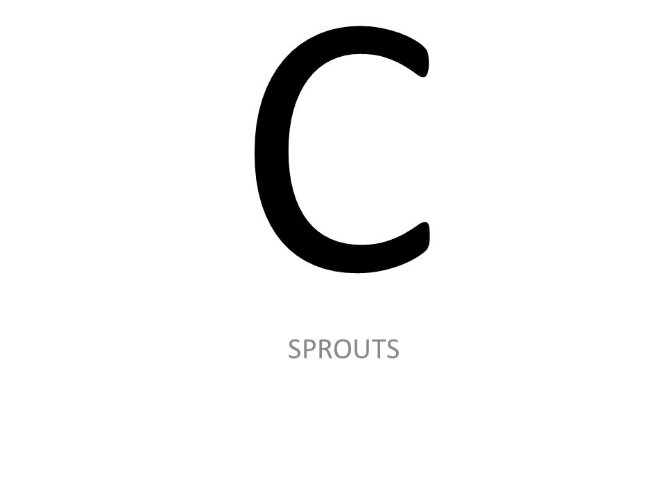 C SPROUTS