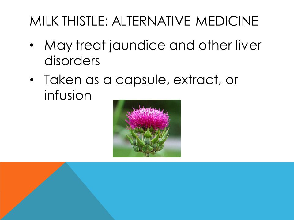Milk thistle: alternative medicine
