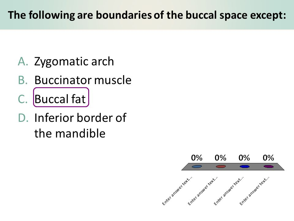 The following are boundaries of the buccal space except: