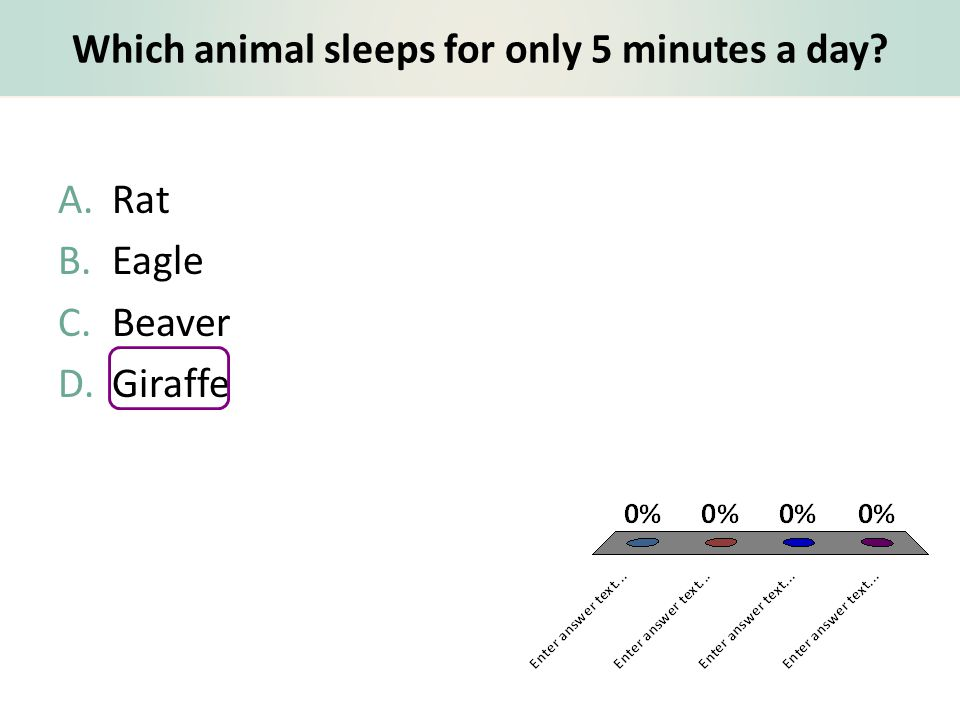 Which animal sleeps for only 5 minutes a day