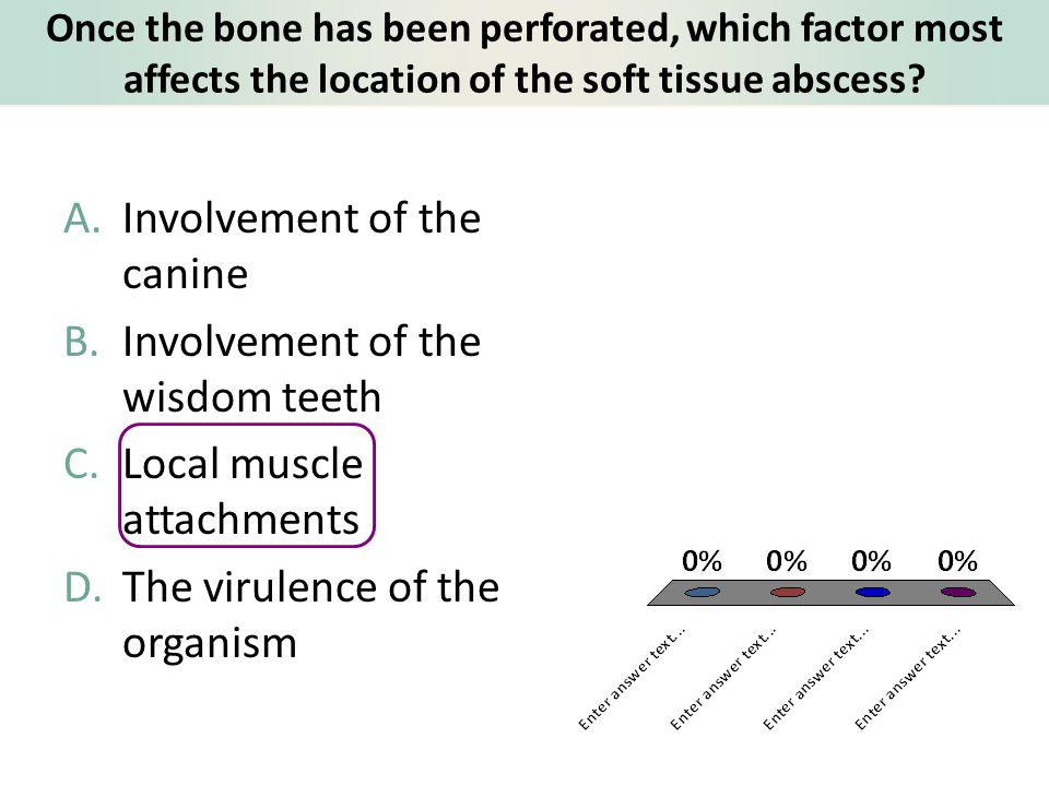 Involvement of the canine Involvement of the wisdom teeth
