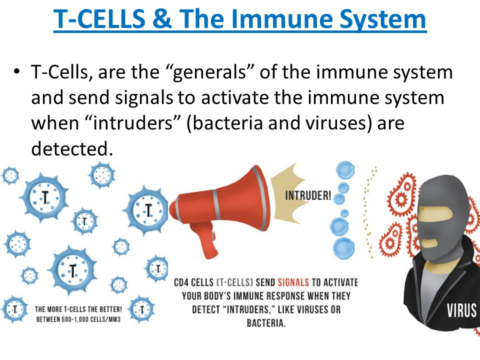 T-CELLS & The Immune System