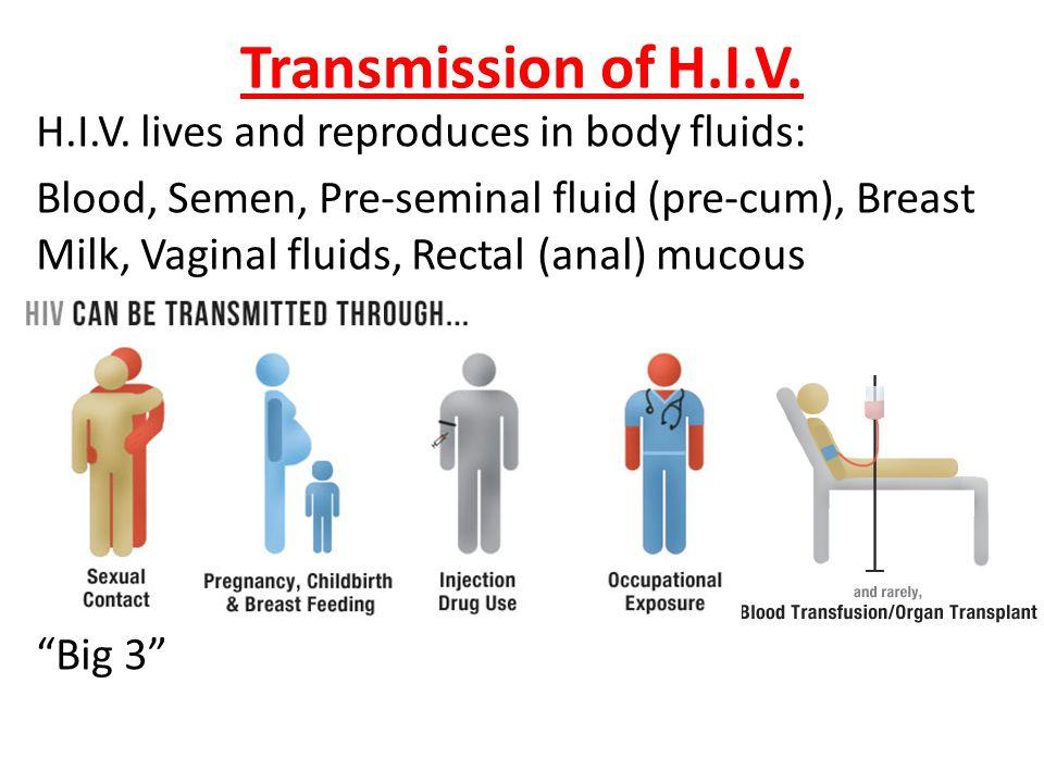 Transmission of H.I.V.