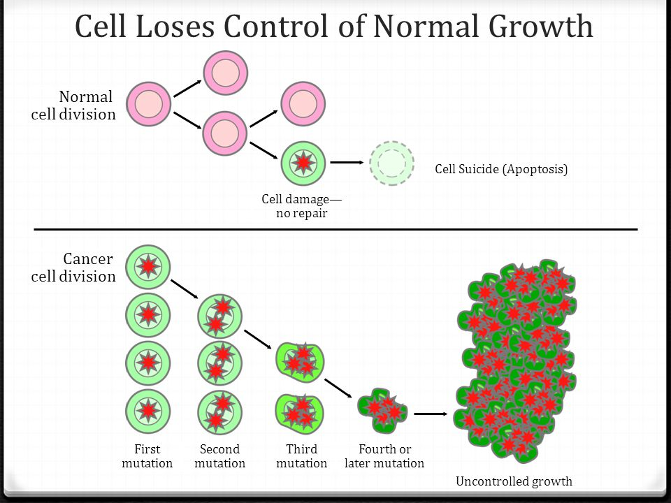 Cell Loses Control of Normal Growth