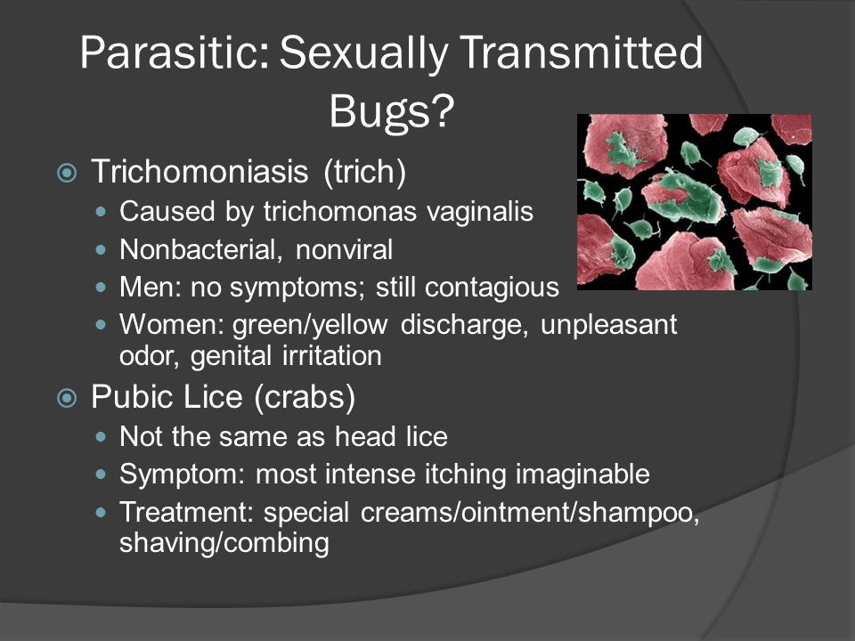 Parasitic: Sexually Transmitted Bugs