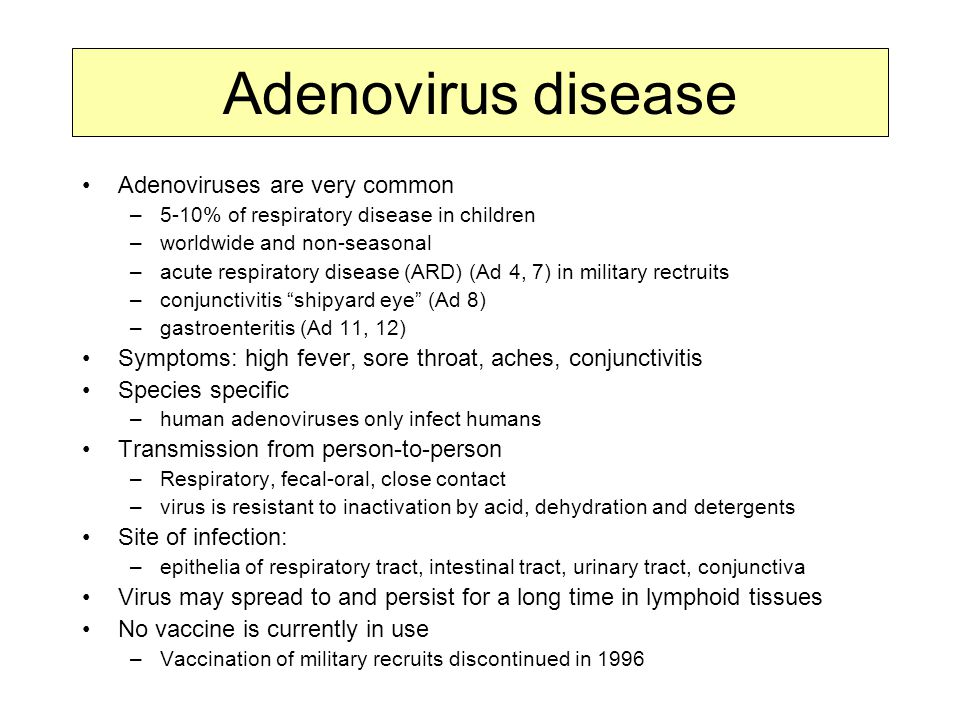 Adenovirus disease Adenoviruses are very common