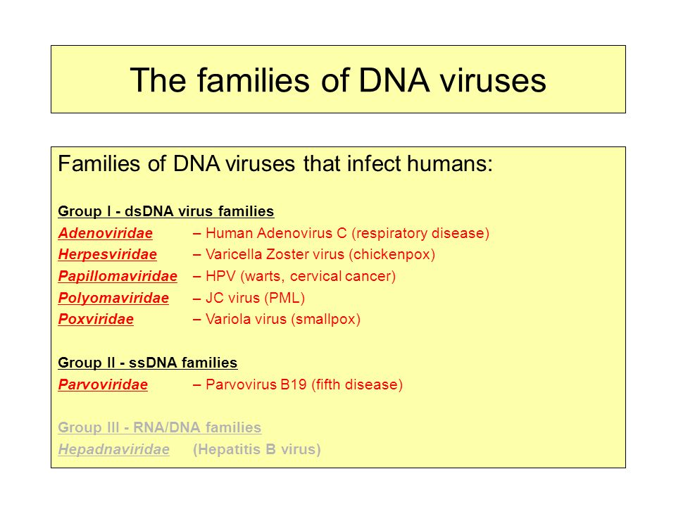 The families of DNA viruses