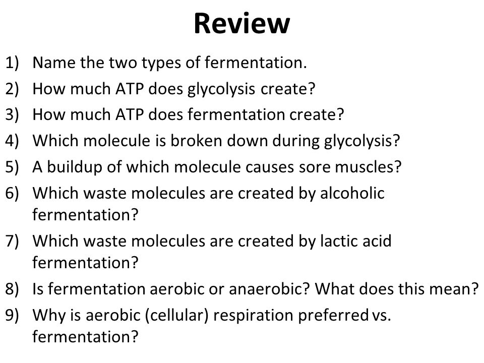 Review Name the two types of fermentation.