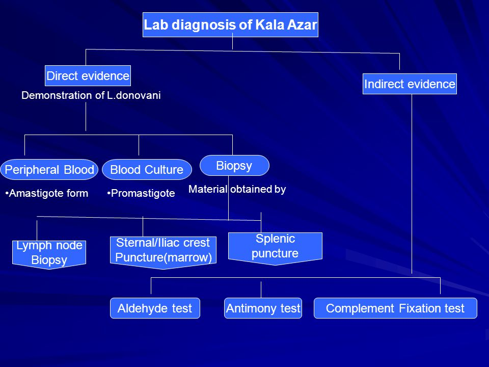 Lab diagnosis of Kala Azar