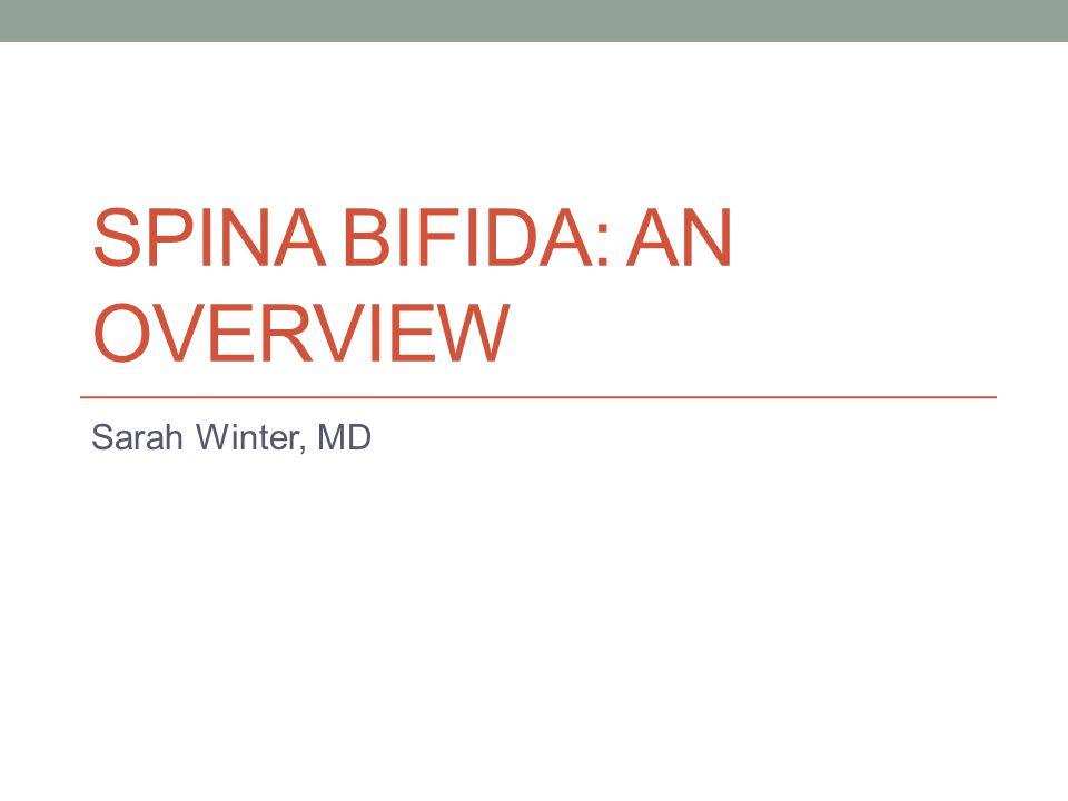 Spina Bifida: An Overview