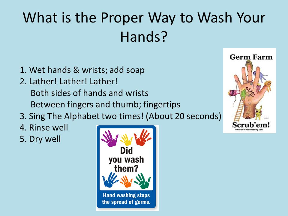 What is the Proper Way to Wash Your Hands